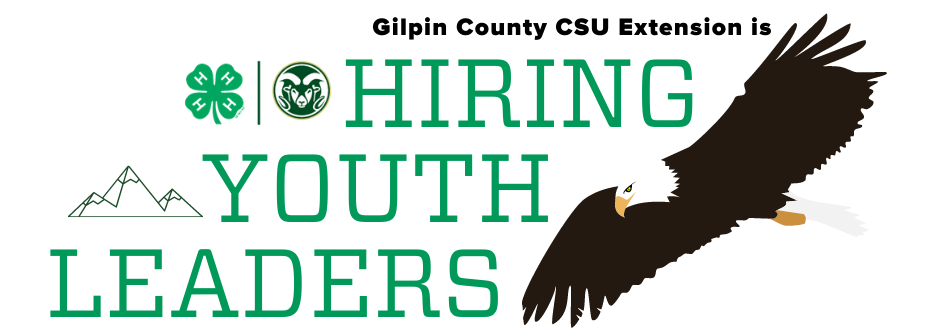 Gilpin County CSU Extension is hiring youth leaders